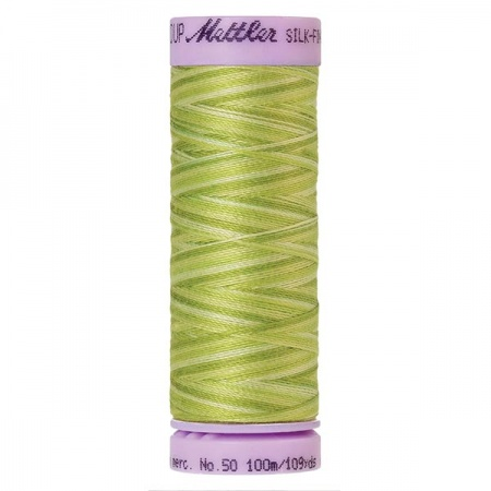 9817 - Little sprouts Mettler Silk-Finish Cotton Multi 50 100m