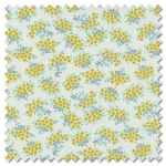 Flour Garden - forget me not feather sprouts (per 1/4 metre)