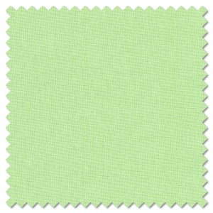 Solids - Mint (per 1/4 metre)