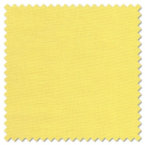 Solids - Maize (per 1/4 metre)